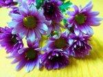 Sztuczne kwiatki jako świetna ozdoba do domu